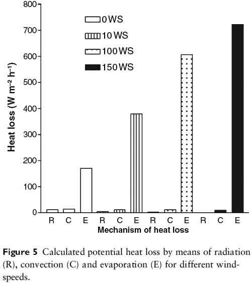 Videns påverkan på nedkylningen av kroppen
