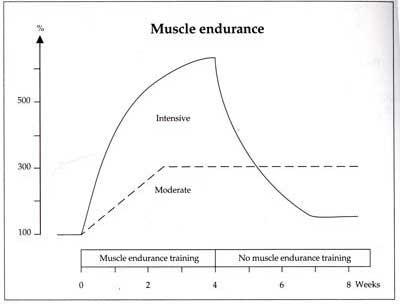 Muskeluthållighet hos fotbollsspelare