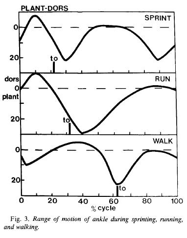 Rörelseutslag i foten vid löpning
